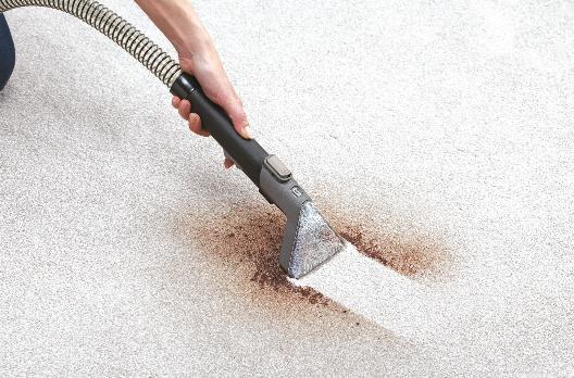 CARPET UPHOLSTERY CLEANER Floor Machine Home Pet