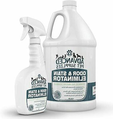 odor eliminator and stain remover carpet cleaner