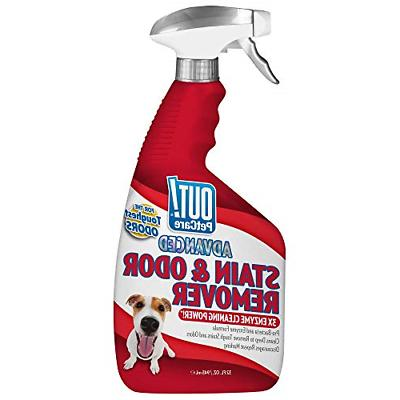 pet stain odor remover eliminator dog cat