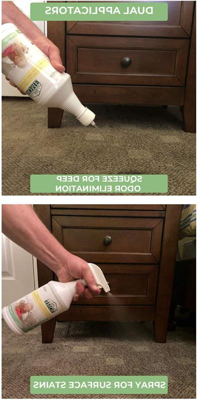 Pet Carpet Cleaner: Spot and Stain Cat and