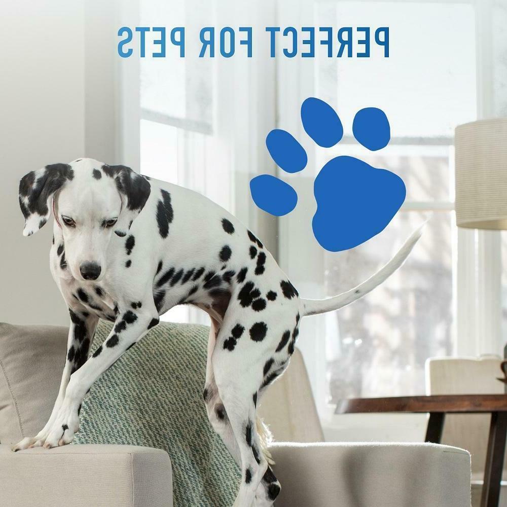 Hoover Portable Cleaner Shampooer Machine Pet Carpet
